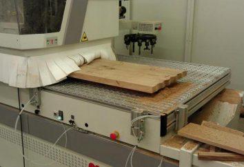¿Cómo elegir una máquina para trabajar la madera, CNC?