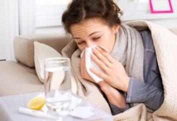 """""""Grippol"""" (szczepionka): opinie. Co jest lepsze szczepionki przeciw grypie"""