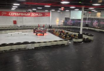 "Club ""Silver regen"" Sokolniki (Karting Center): Bewertungen"