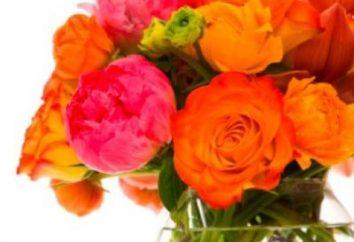 ¿Por cuánto tiempo mantener las rosas en un jarrón: algunos secretos