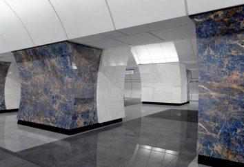 """Seliger"" U-Bahn-Station wird in Kürze in Betrieb genommen"
