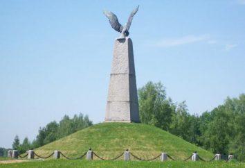 """Borodino-Feld"" – der Staat Borodino Krieg und History Museum und Reserve"