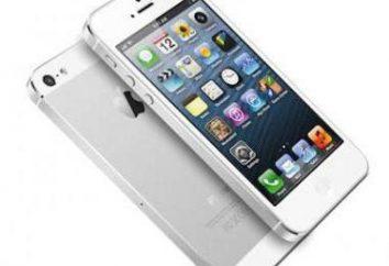 iPhone reciclado 6: Características, características, ao contrário do original