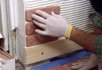 finition du sous-sol: Options et photos