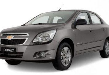 Oszczędnych pojazdów do zużycia paliwa w Rosji. Wydajne samochody benzynowe: top 10