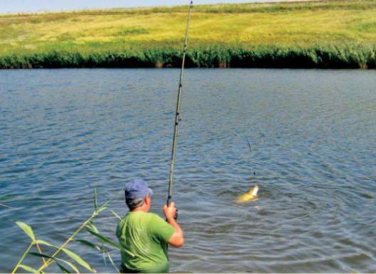 erfolgreich angeln am fluss