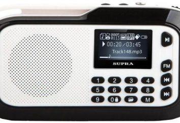 Überblick über das Audiosystem Supra PAS-3909