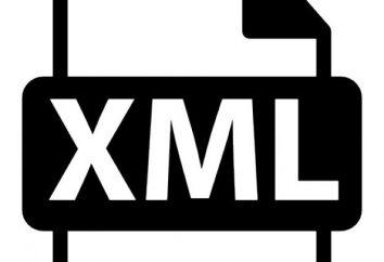 XML: was es ist und wie es zu öffnen?
