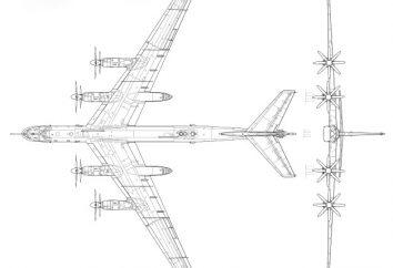 Strategische Bomber Tu-95: Eigenschaften und Foto