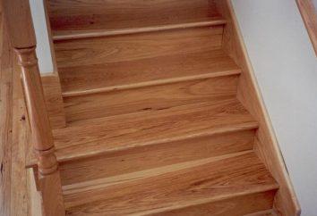 marches d'escalier: leurs caractéristiques