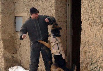 Historia święta: Dzień FSB