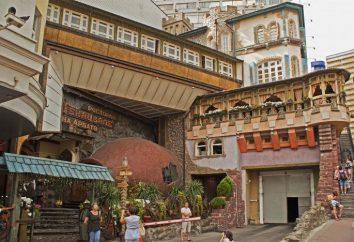Restauracja Genatsvale on Arbat: zdjęcia, opinie, adres