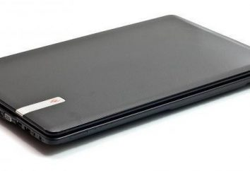 Notebook Packard Bell P5WS0