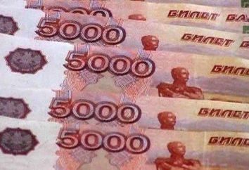 """Ciò che minaccia il rublo """"Free Floating""""? A causa di ciò che la Banca centrale abbassa il rublo nel """"nuoto libero""""?"""