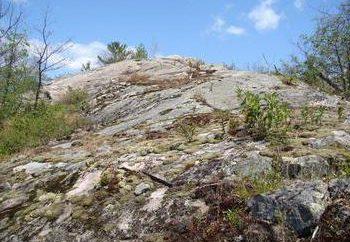 Geografia. Qual è la differenza tra il suolo e la roccia?