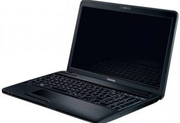 Laptop Toshiba Satellite: przegląd, specyfikacje, opinie