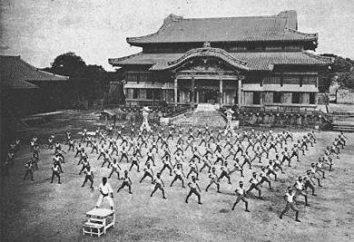 Krótka historia karate na świecie iw Rosji