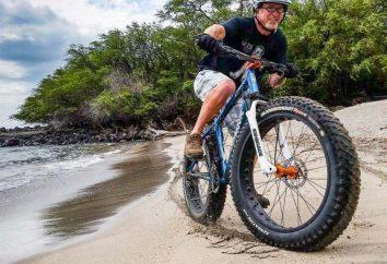 Chiński rower z szerokimi oponami: opis, zdjęcia, opinie