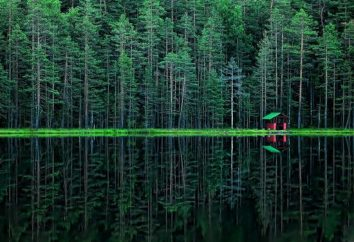 Lac Radon – une merveille de la nature
