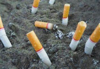 Efecto de la nicotina en el cuerpo humano. Sobre los peligros de fumar