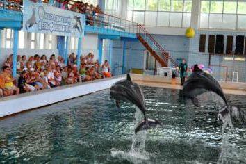 Karadag Dolphinarium: descrição e comentários