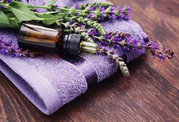 Por que usar um óleo essencial? Alfazema: Propriedades e aplicação em óleos cosméticos