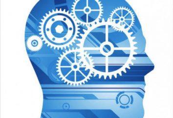 Che cos'è l'intelligenza e come si sviluppa
