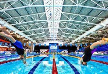 rekordy świata w pływaniu. Główne rodzaje i style pływania