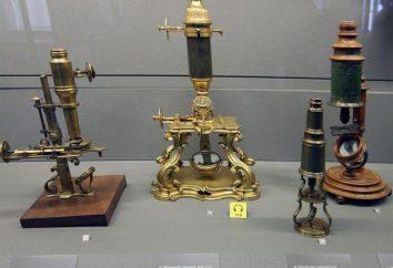 Che cosa è un microscopio? analisi dettagliata