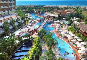 Royal Dragon Hôtel 5 * (Turquie): infrastructure Hôtel, la description des chambres, des services, des critiques. Vacances en Turquie avec des enfants