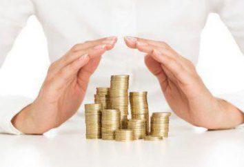 Umsatz und Gewinn: was ist der Unterschied zwischen den beiden Wirtschaftskonzepte ist