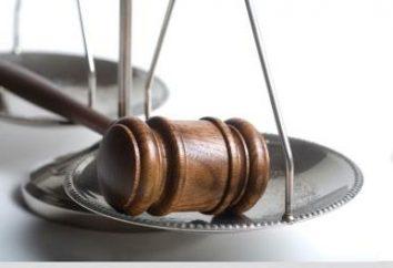 quadro regulamentar – a base da organização