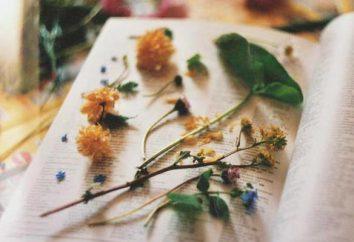 Als zasushivat Blumen richtig? Schritt für Schritt Anleitung, Beratung und Funktionen