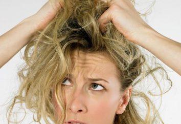Ukrywa włosy: co zrobić i co zrobić