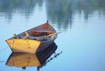 Lo que es un barco de sueño: Sueño libro