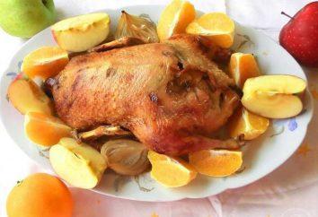 Die erfolgreichste Begleitung zu ducken: mehrere verlockende Rezepte