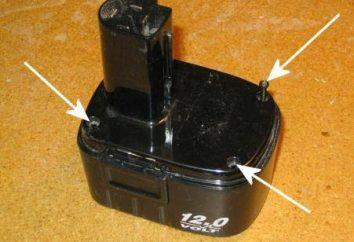 Batterie de restauration tournevis. Comment récupérer le tournevis de la batterie