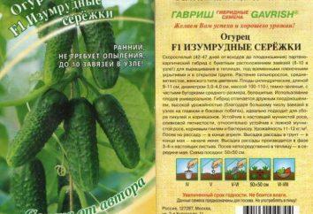 pendientes de esmeraldas pepino (F1): opiniones, descripciones, especificaciones, cultivo