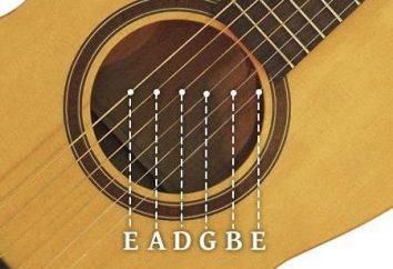 Imię struny gitary: podstawą kształcenia słuchu i nie tylko …