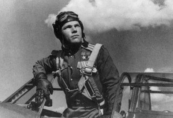 piloto de combate de la Segunda Guerra Mundial soviética