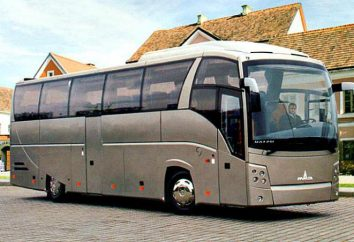 MAZ-251 – Autobus turystyczny