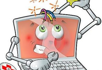 Jak przywrócić system Windows XP za pomocą środków z deweloperem?
