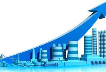 Wie machen die Produktion effizienter und profitabler
