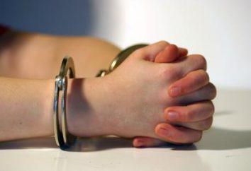 Il concetto e lo scopo del procedimento penale