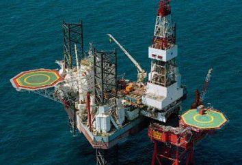 Der Selbstkostenpreis von russischem Öl. Die Struktur der russischen Ölpreise