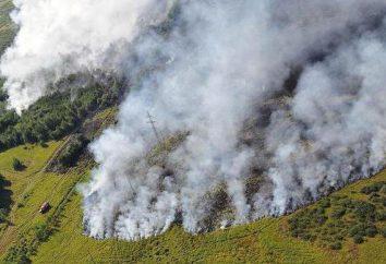 Brände in Burjatien. Feuerlöschen. Effekte
