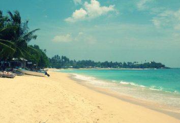 Hotel Serendipity Beach (Unawatuna, Sri Lanka): opis, usługi, opinie