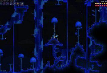 """Le creature del gioco """"terrario"""": il tartufo verme"""