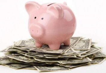Comment apprendre à économiser de l'argent et économiser de l'argent avec des revenus modestes? conseils pratiques