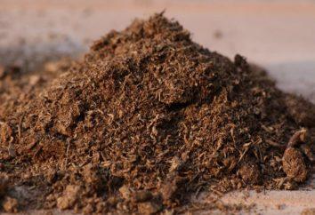 Turba – ¿qué es esto? Extracción, propiedades y uso de turba